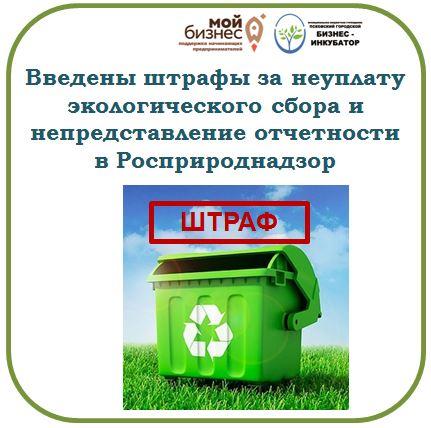 Введены штрафы за неуплату экологического сбора и непредставление отчетности в Росприроднадзор