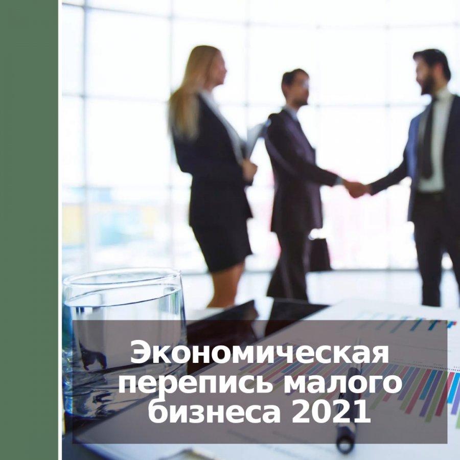 Экономическая перепись малого бизнеса 2021